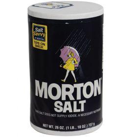 Morton Salt Safe